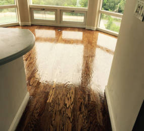 dark-wood-floor-stain2